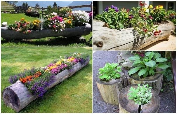 Log-Planters