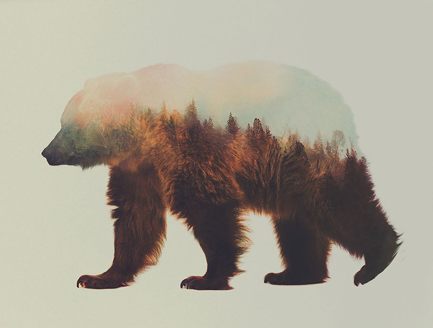 AD-Double-Exposure-Animal-Photography-Andreas-Lie-10