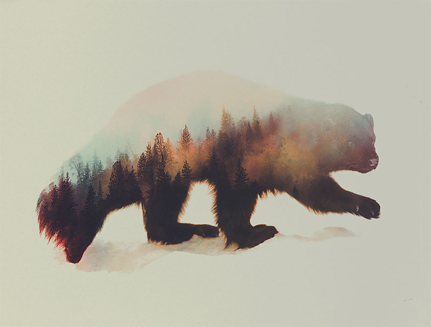 AD-Double-Exposure-Animal-Photography-Andreas-Lie-14