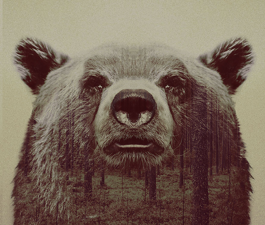 AD-Double-Exposure-Animal-Photography-Andreas-Lie-19