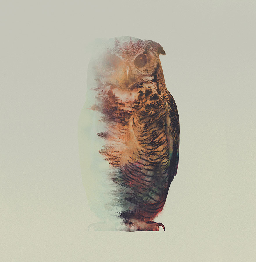 AD-Double-Exposure-Animal-Photography-Andreas-Lie-5