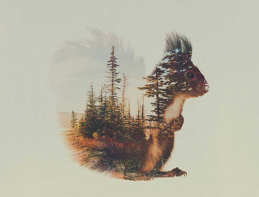 AD-Double-Exposure-Animal-Photography-Andreas-Lie-7