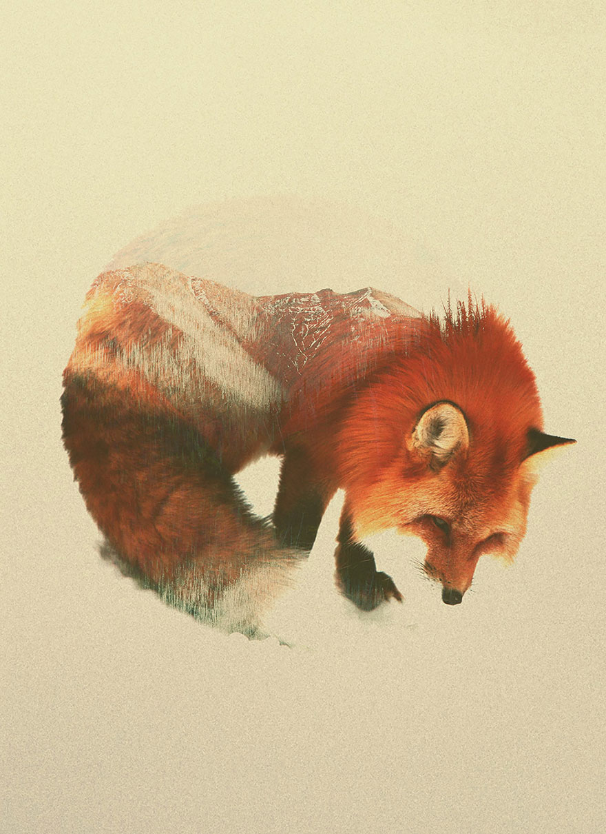 AD-Double-Exposure-Animal-Photography-Andreas-Lie-8