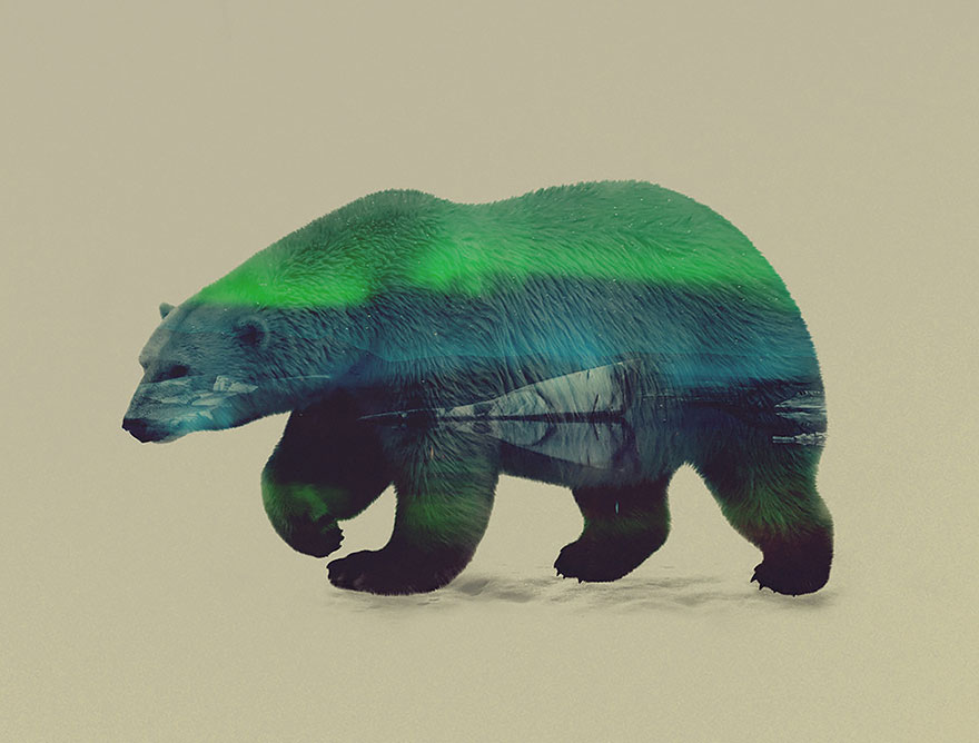 AD-Double-Exposure-Animal-Photography-Andreas-Lie-9