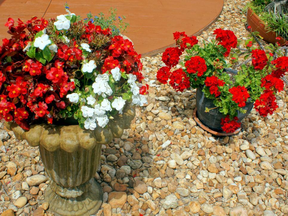 تنسيق الصخور في الحدائق المنزلية