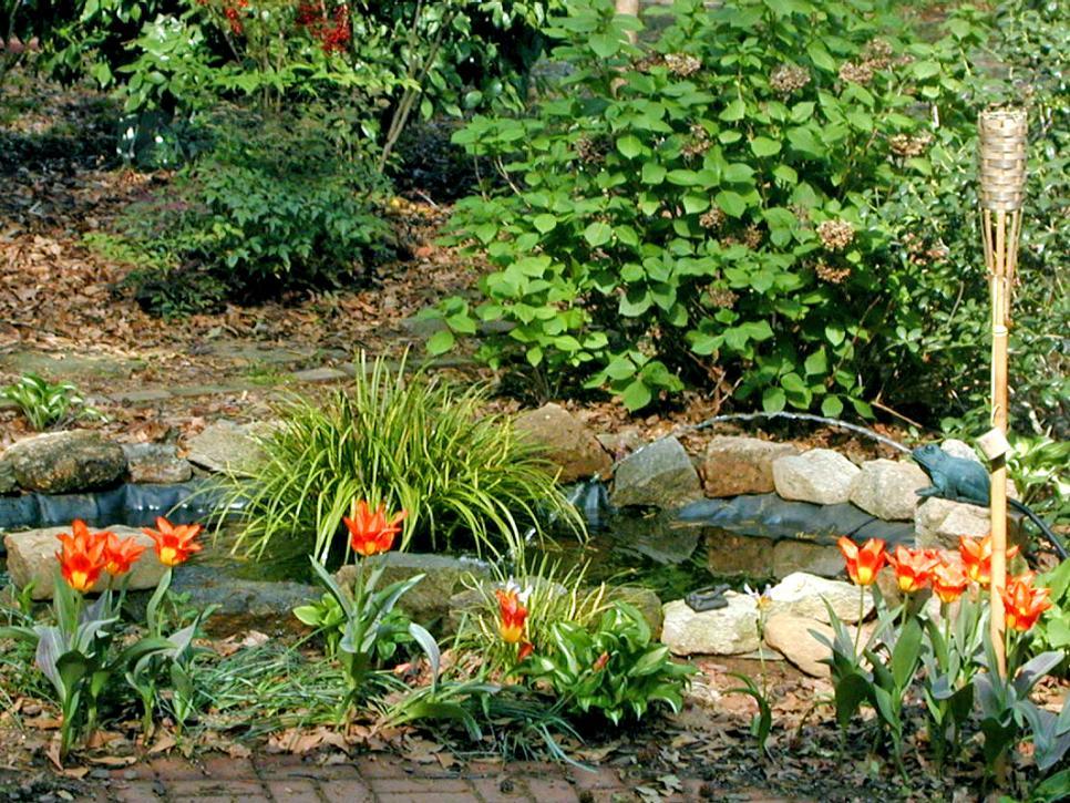 تنسيق الصخور في حديقة منزلك