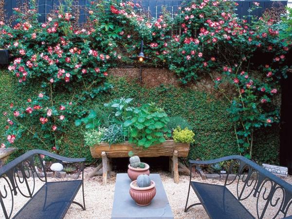 تنسيق جميل لحديقة منزل صغيرة
