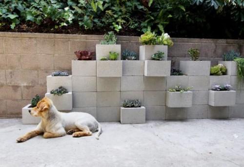 افكار جديدة للزراعة المنزلية
