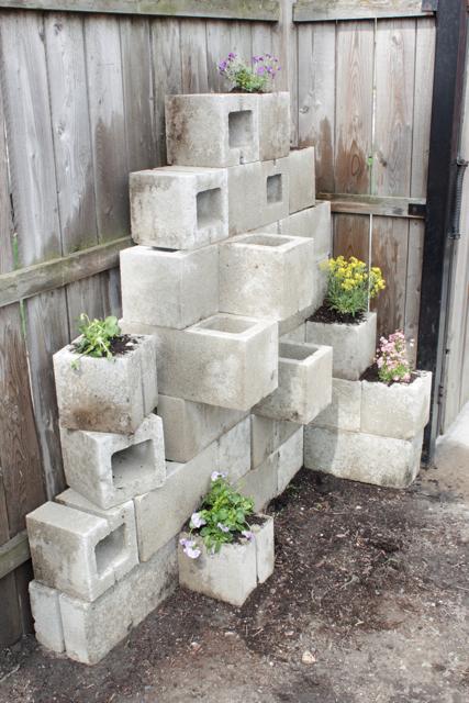 افكار للزراعة المنزلية