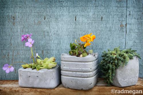 طرق مبتكرة للزراعة المنزلية