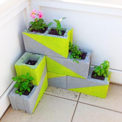 افكار للزراعة في منزلك