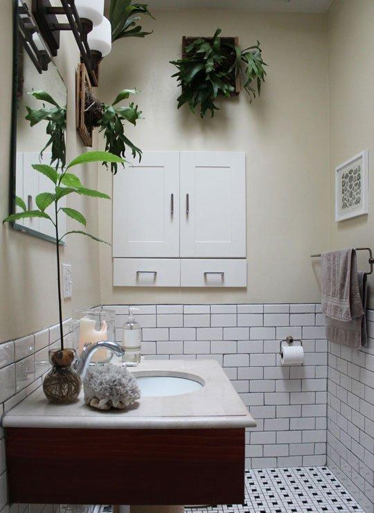نباتات زينة اكسسوارات للحمام
