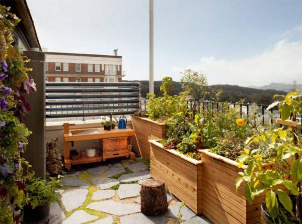 الحدائق المنزلية البسيطة
