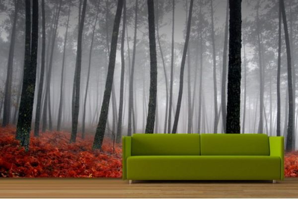 اوراق الجدران غابة الخريف ثلاثي الأبعاد المذهل