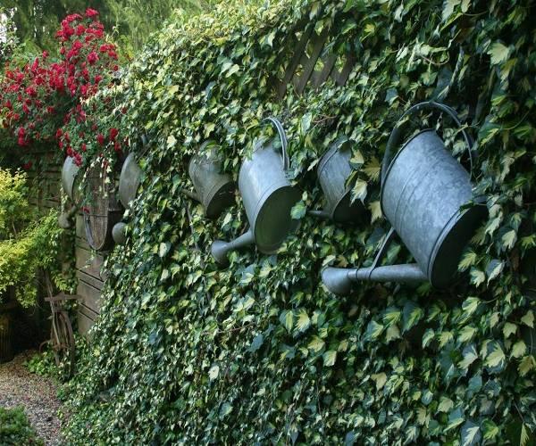 تزيين الحدائق المنزلية الصغيرة