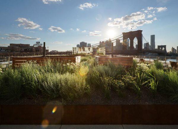 تصاميم حدائق الاسطح