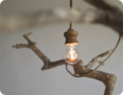 اضاءة معلقة على شجرة